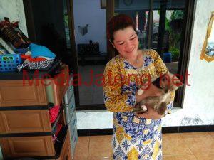Dewi, salah satu partner Yuli yang memperjuangkan hidup kucing-kucing liar.