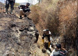 """cf631592ef8a2c Mayat Wanita Berkaos """"Blue Note"""" Ditemukan Tewas di Lereng Sindoro"""